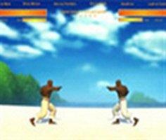 Capoeira Dövüşü